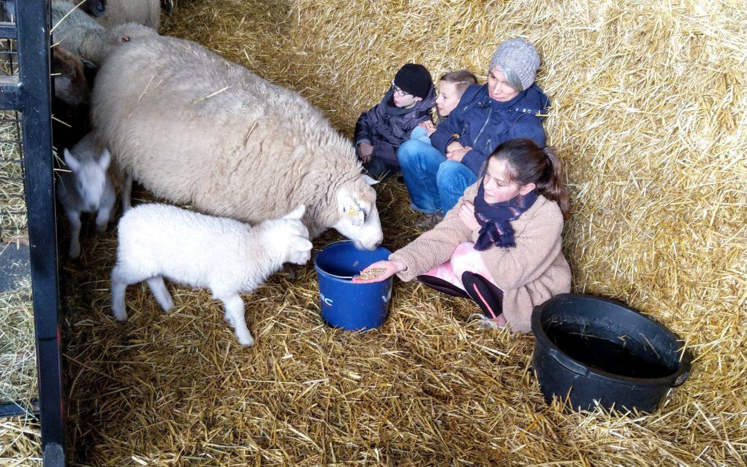 Nous sommes tous des enfants de la ferme !