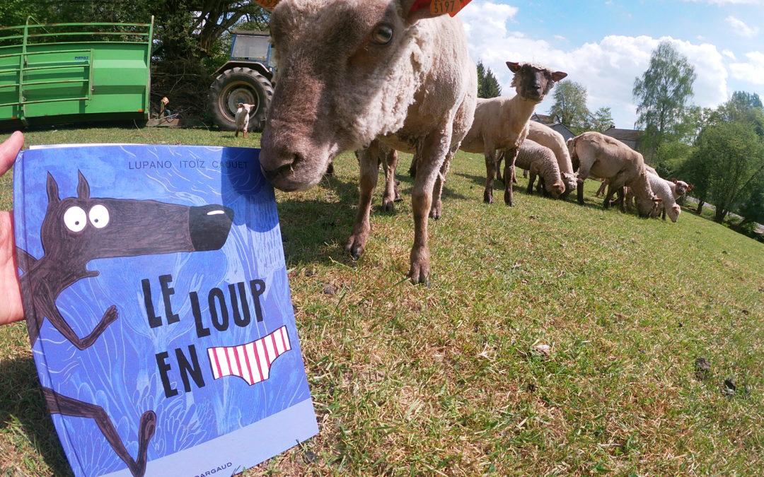 La ferme à histoires est en prairie avec les moutons et «Le loup en slip»