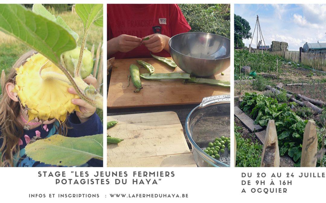 Stage pour enfants : les jeunes fermiers potagistes du Haya