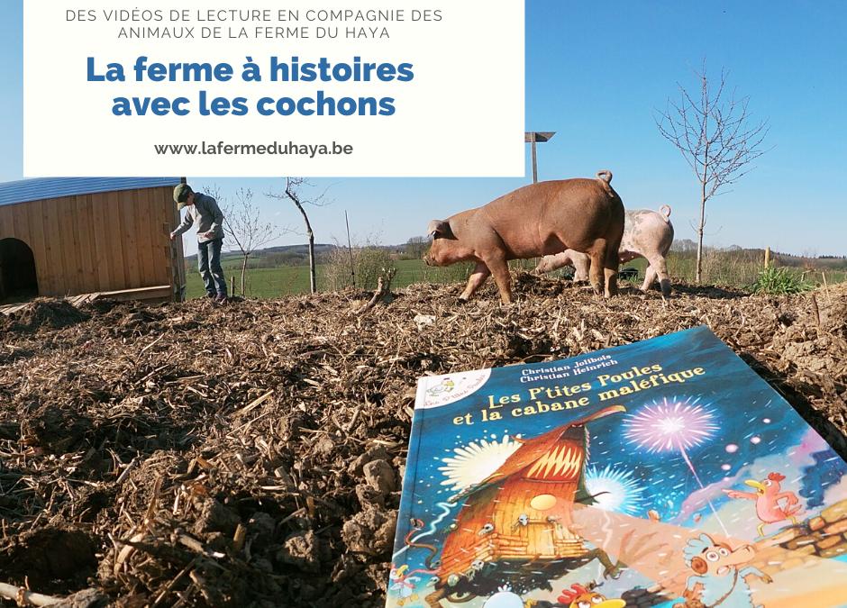 La ferme à histoires est avec les cochons et «Les p'tites poules»