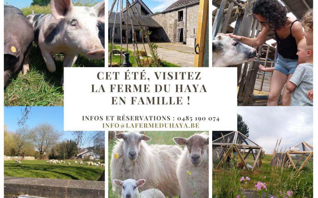 Réservez une visite guidée de notre ferme lors de la remise de votre colis