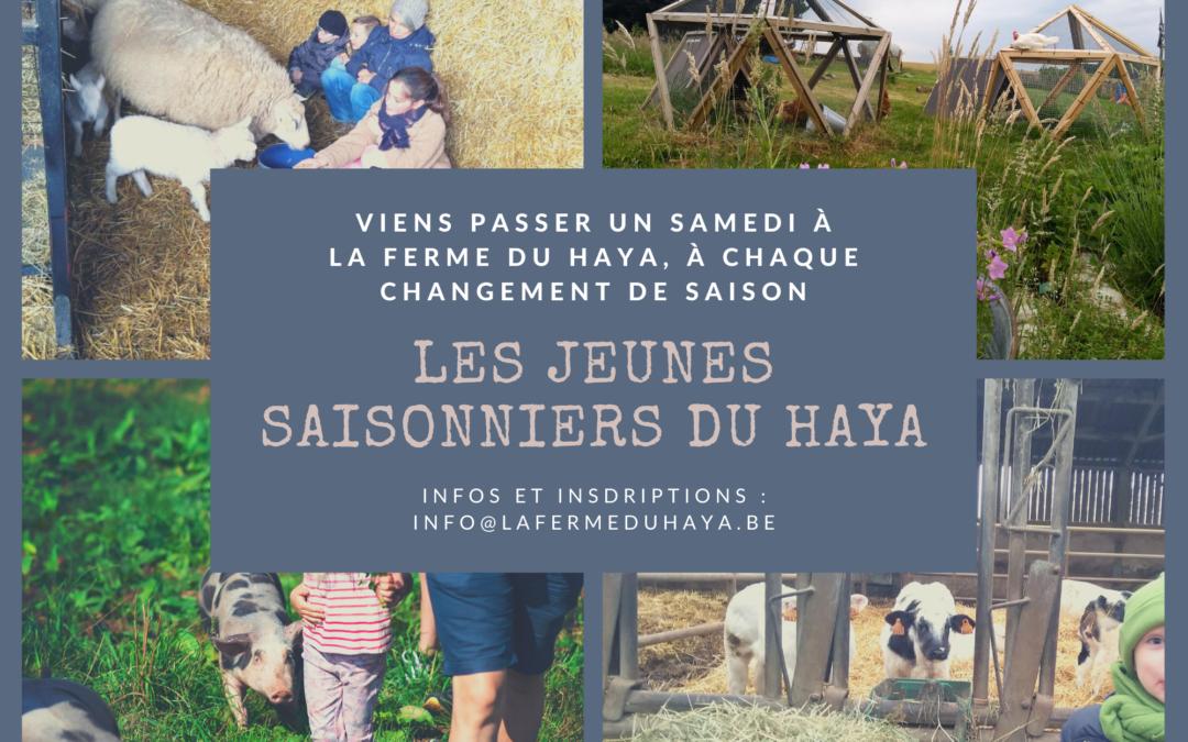 Les jeunes saisonniers du Haya