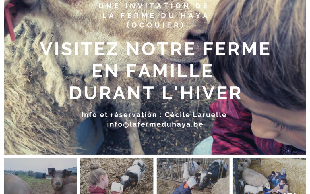 Venez découvrir notre ferme