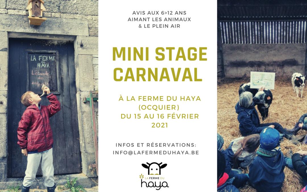 Mini stage de carnaval à la ferme du Haya