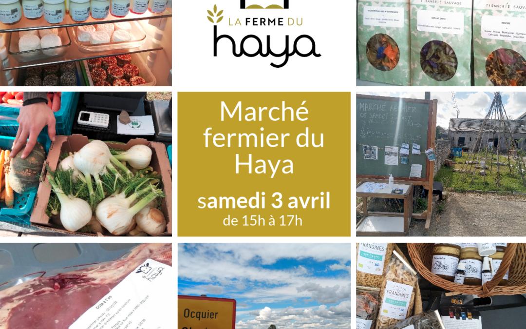 Marché fermier du Haya samedi 3 avril