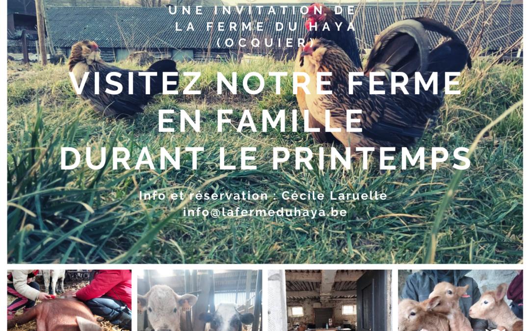 Visitez notre ferme en famille durant le printemps