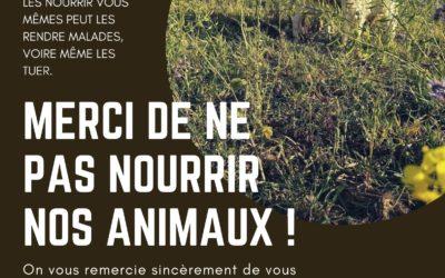 Merci de NE PAS NOURRIR nos animaux !